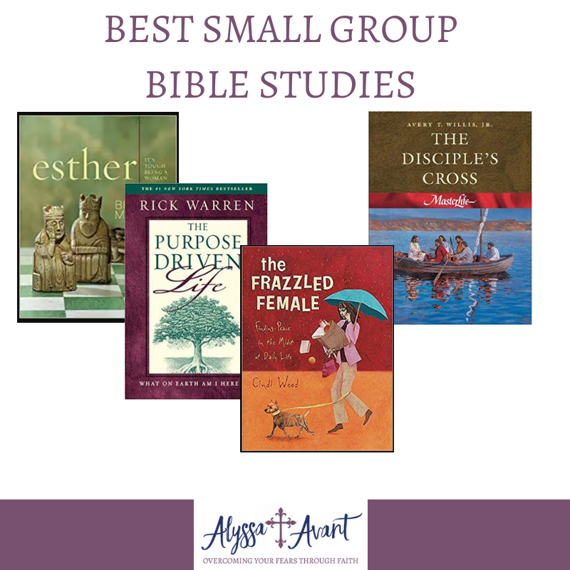 Best Small Group Bible Studies